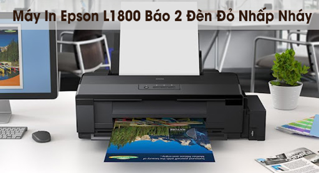Máy In Epson L1800 Báo 2 Đèn Đỏ Nhấp Nháy